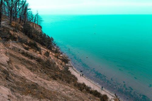 Ingyenes stockfotó #tenger, emberek, erdő, fák témában