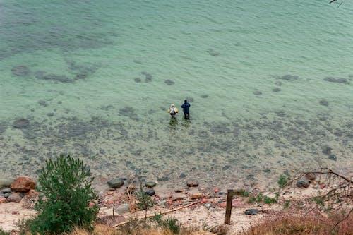 Ingyenes stockfotó emberek, hal, halász, homok témában