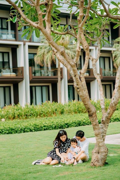 一起, 世代, 亞洲女孩 的 免費圖庫相片
