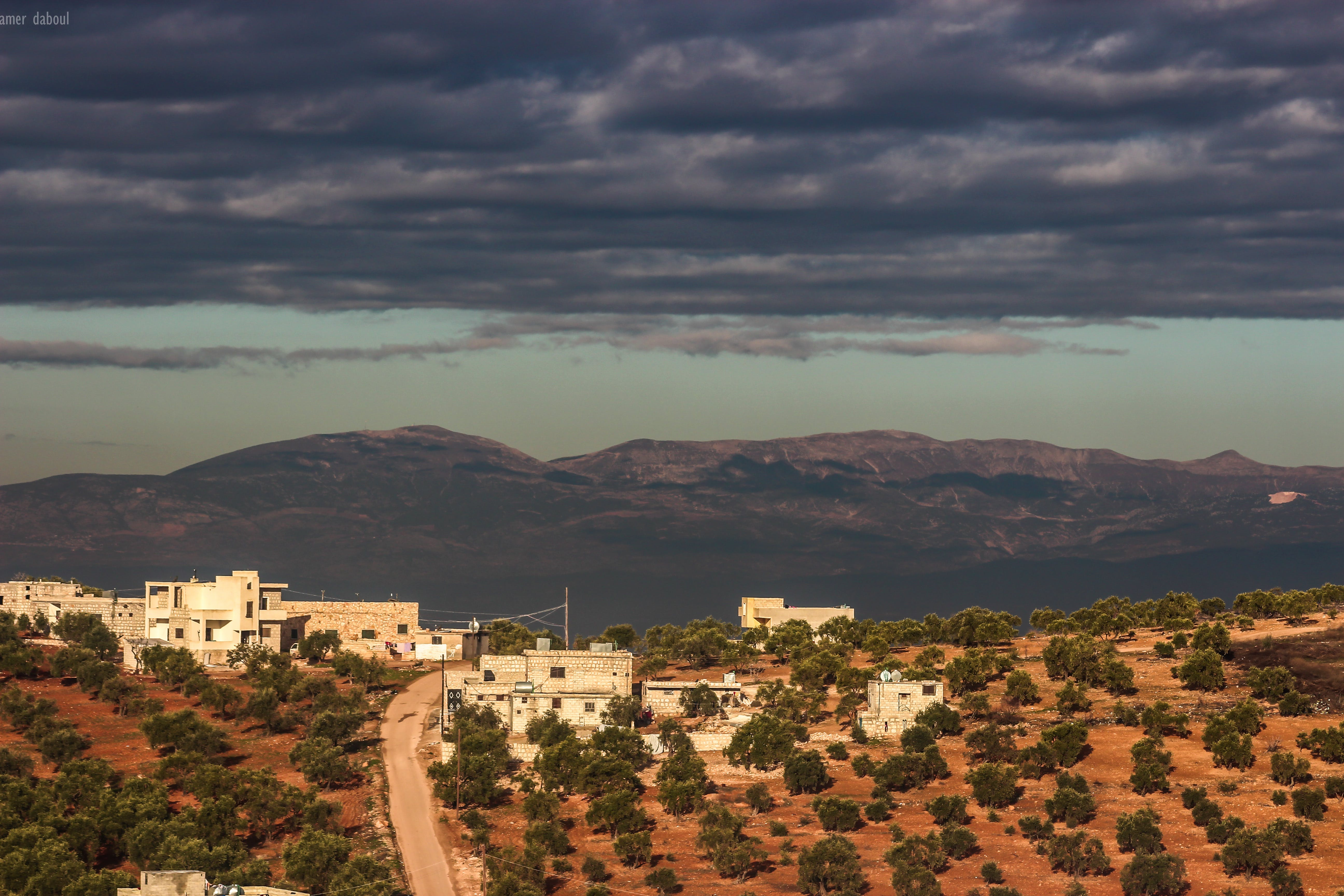Free stock photo of natue, natural, photography, Syria
