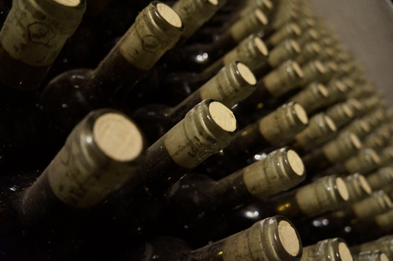 alkoholisches getränk, champagner, container