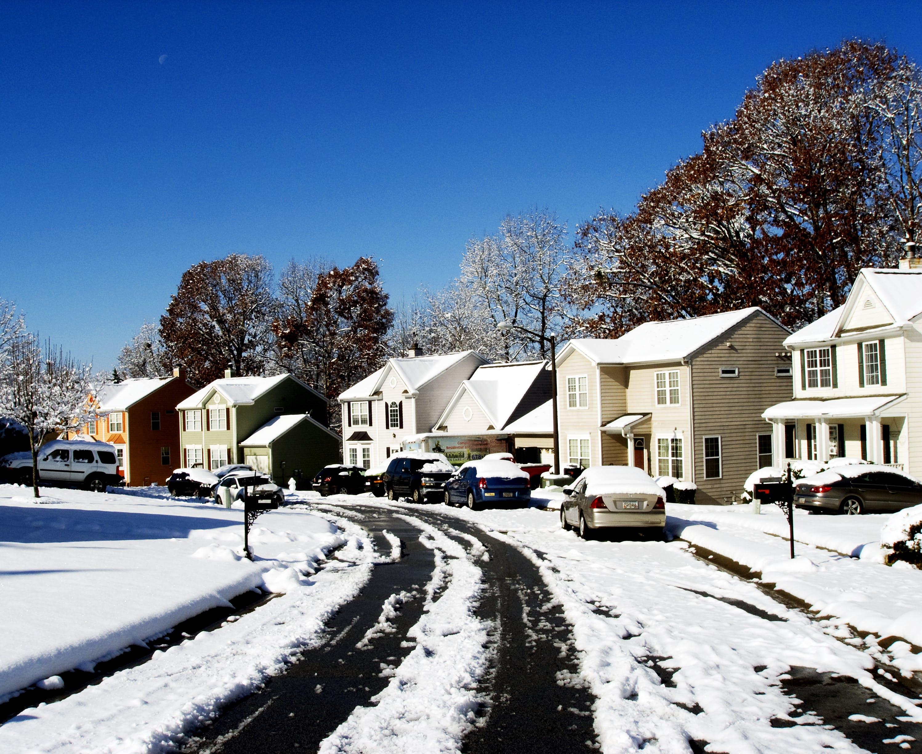ağaçlar, arabalar, buz, buz tutmuş içeren Ücretsiz stok fotoğraf