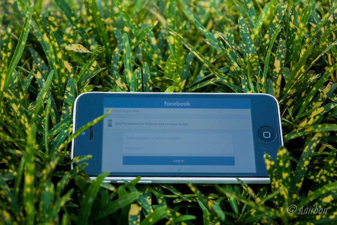 White Iphone 5c on Green Grass