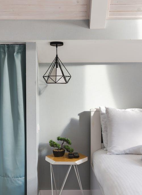 Бесплатное стоковое фото с в помещении, ваза, дизайн интерьера