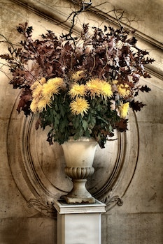White Ceramic Vase With Yellow and Brown Plants