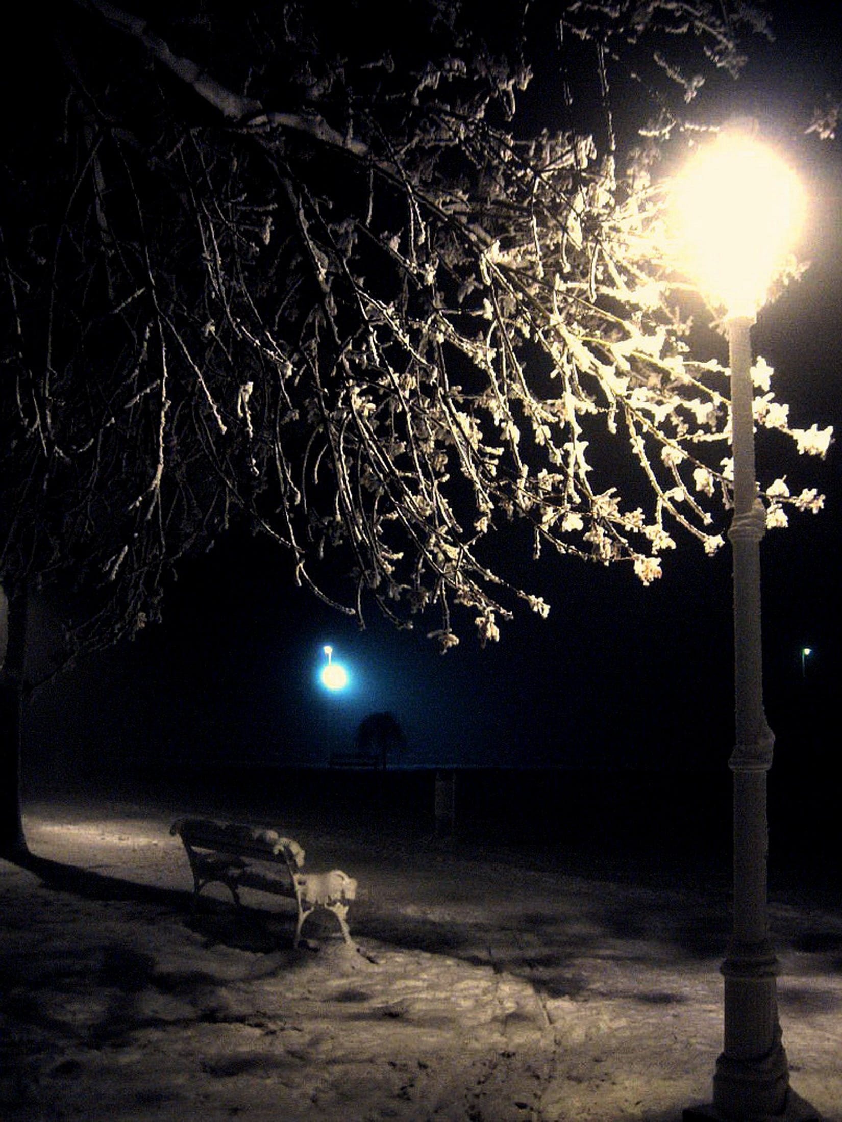 Free stock photo of lights, night life, night lights, night photography