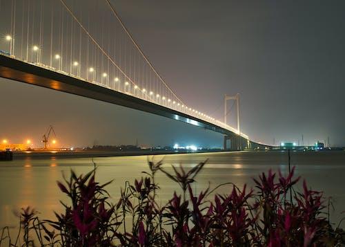 Foto stok gratis angkutan, cahaya, Cina