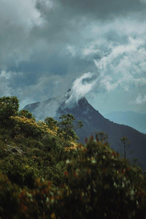 Darmowe zdjęcie z galerii z chmury, drzewa, góry, krajobraz