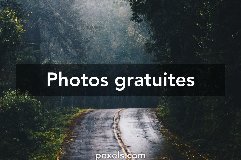 1000 Fond D Ecran De Verrouillage Photos Pexels Photos Gratuites