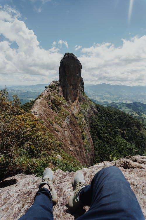 alpinism, alpinist, arbori