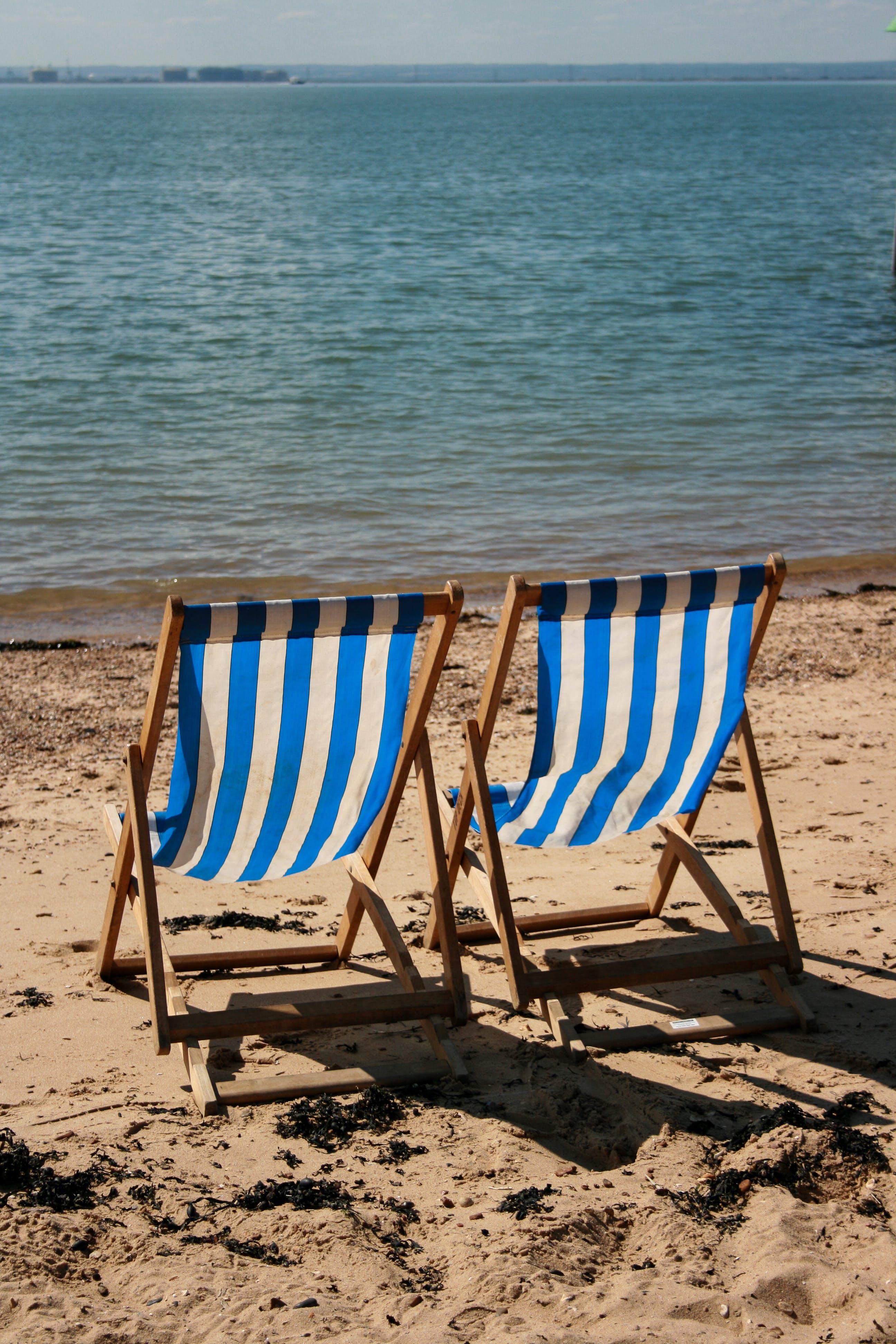 Free stock photo of sea, beach, sand, seaweed