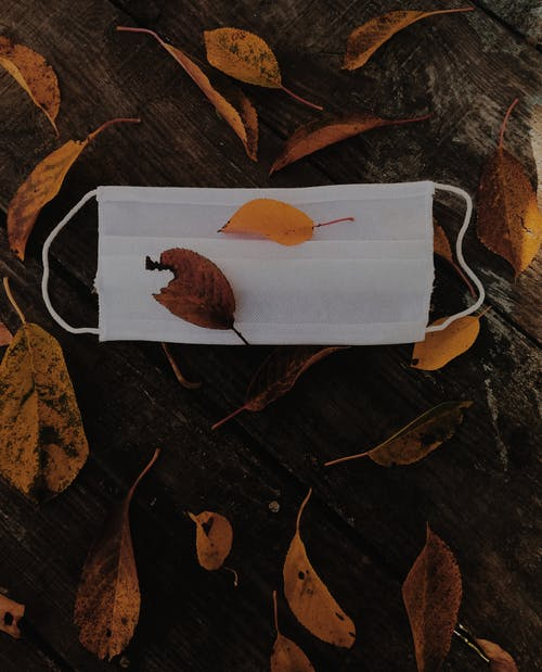 Mask and Autumn Leaves on the Wooden Surface