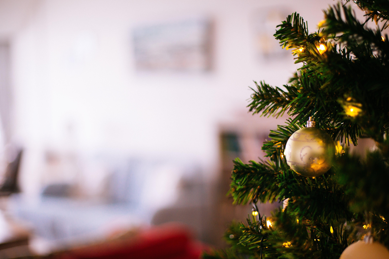 Shallow Focus Photography of Christmas Tree