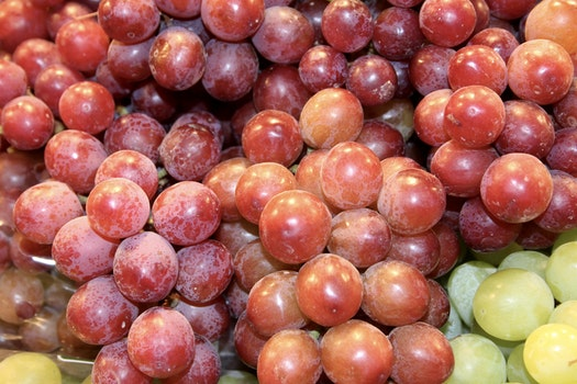 Free stock photo of grapes