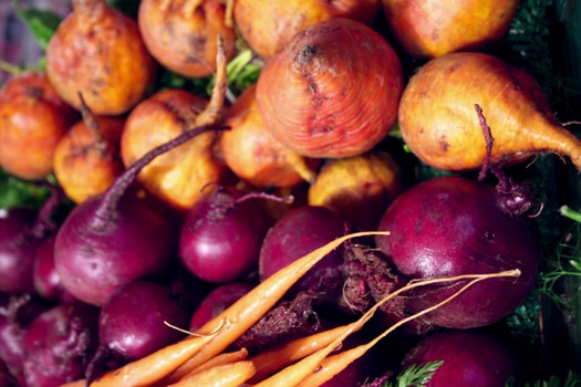 Free stock photo of beets