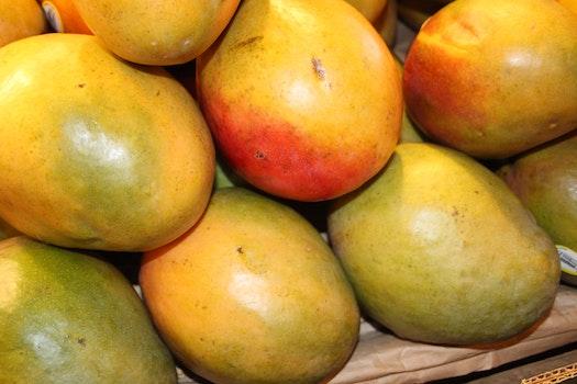 Free stock photo of mango