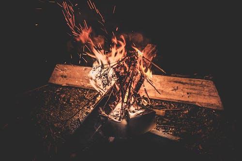 가벼운, 뜨거운, 모닥불, 불의 무료 스톡 사진