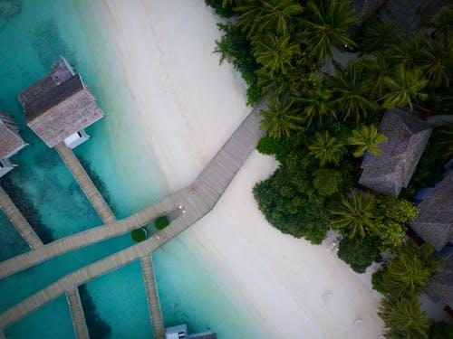 Δωρεάν στοκ φωτογραφιών με ακτή, άμμος, από πάνω