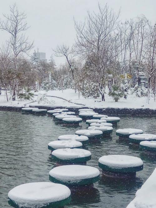Gratis lagerfoto af sne sø