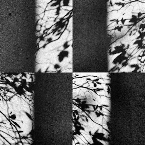 Free stock photo of monochrome photography, shadows