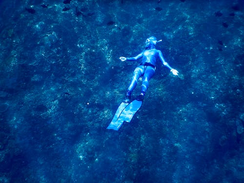 From above of anonymous diver in wet suit and flippers exploring coral reefs while swimming underwater of clear blue sea