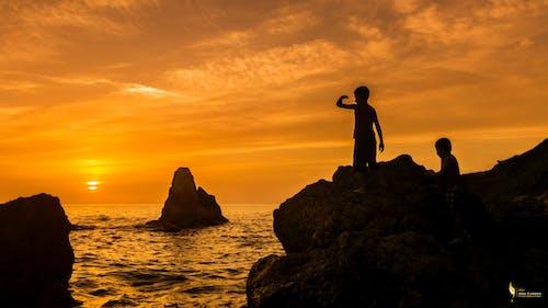 Foto d'estoc gratuïta de capvespre, gall dindi, mar, posta de sol