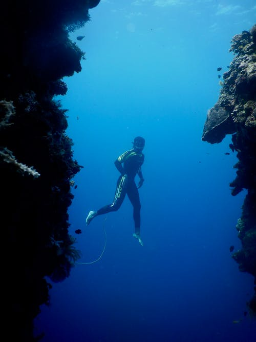 Full body of unrecognizable barefooted diver in wetsuit and mask swimming under clear sea water amidst huge coral reefs in daylight