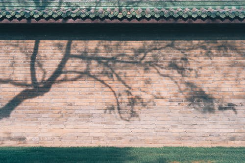 Brown Brick Wall With Shadow of Man and Woman