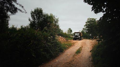 Foto profissional grátis de aconselhamento, área, árvores, automóvel