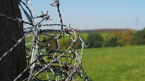 Fotobanka sbezplatnými fotkami na tému hracie pole, ostnatý drôt, príroda