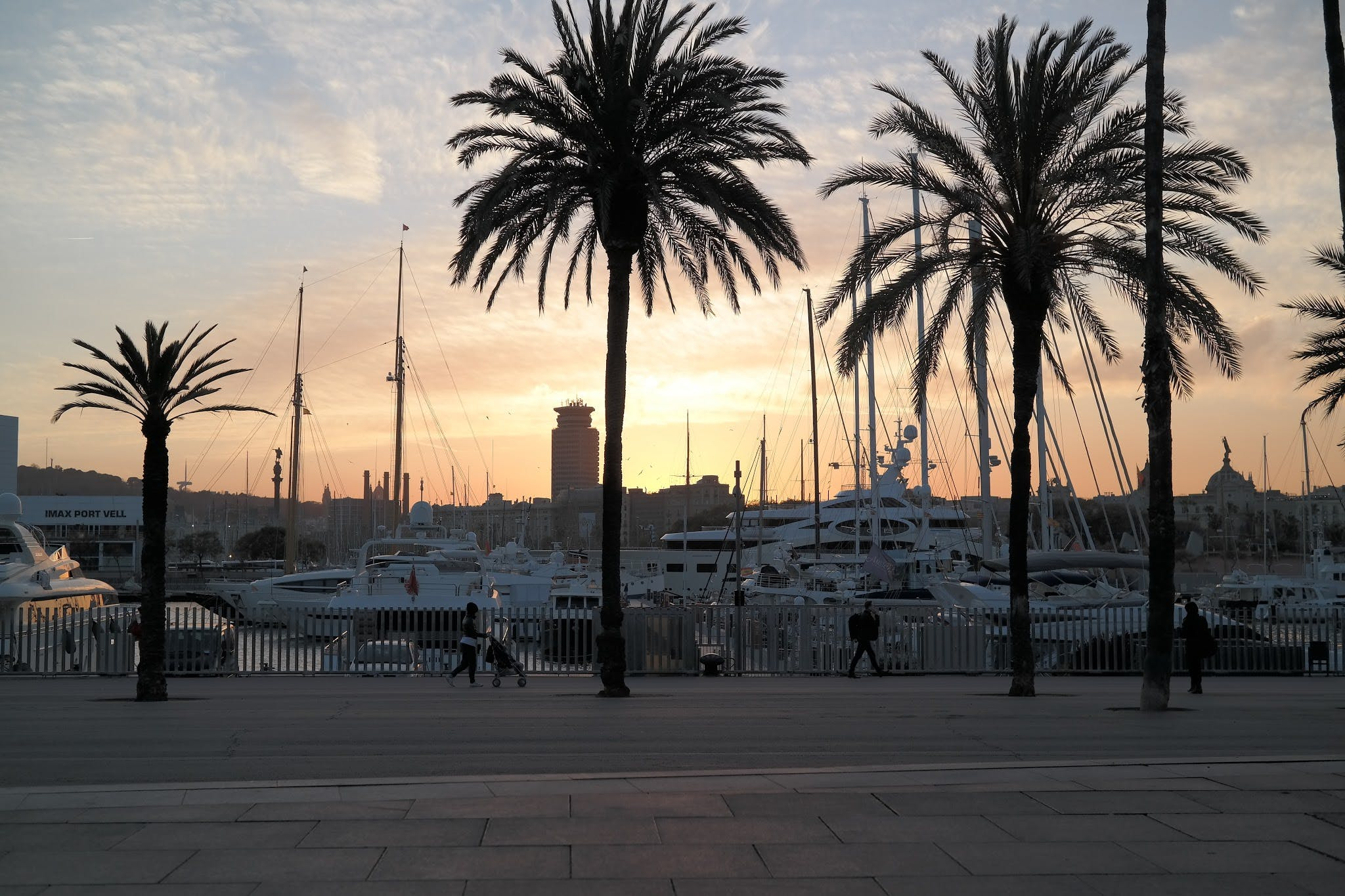 Free stock photo of barcelona, cityscape, harbour, palm trees