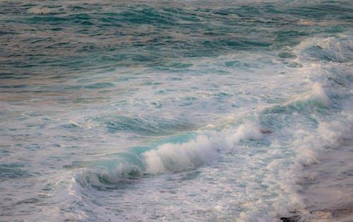 Gratis arkivbilde med bølge, bølger, hav