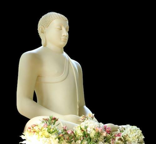 Gratis stockfoto met afzonderen, Azië, bhikkhu, bhikku