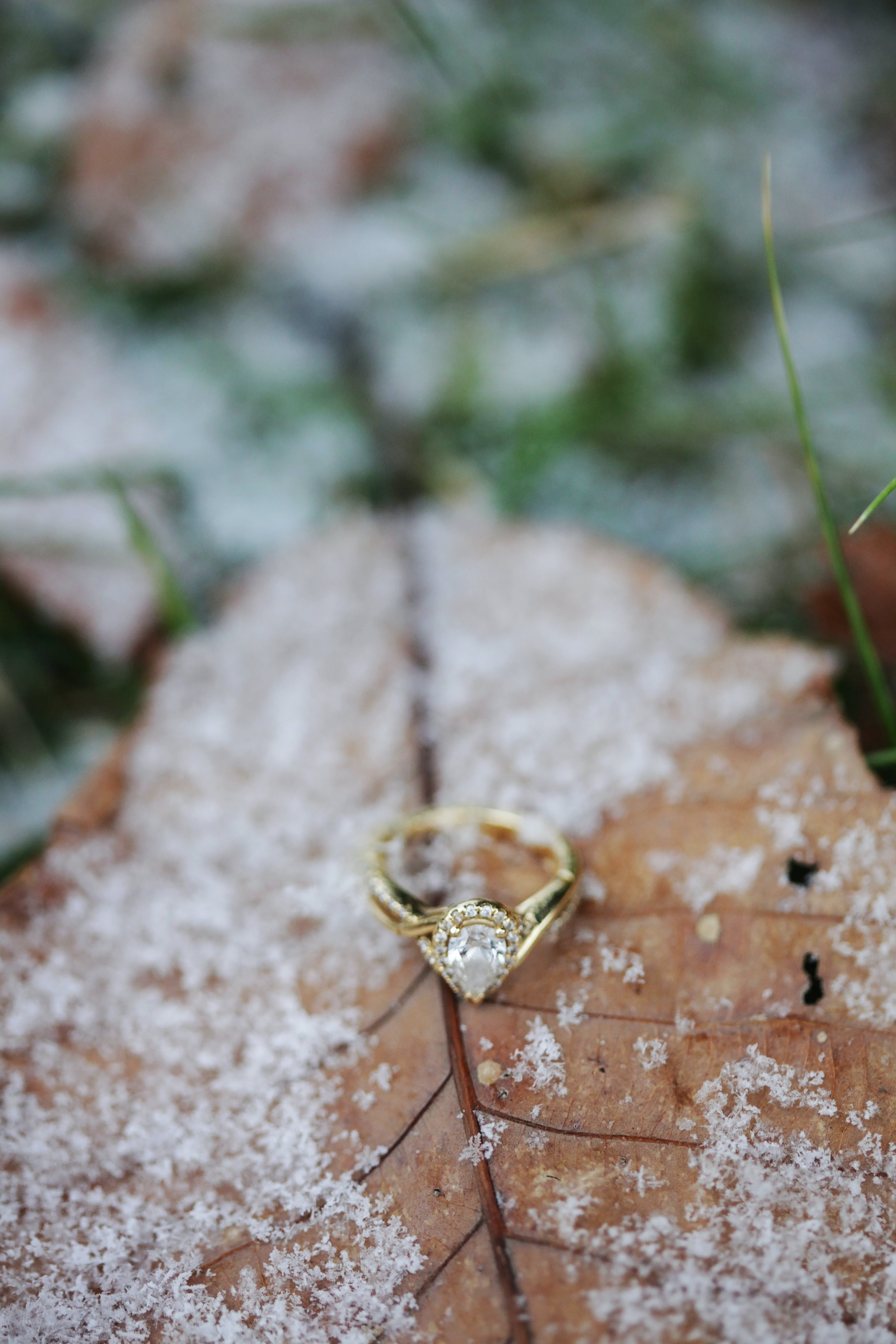 Diamond Pear Cut Ring On Brown Leaf With Snow