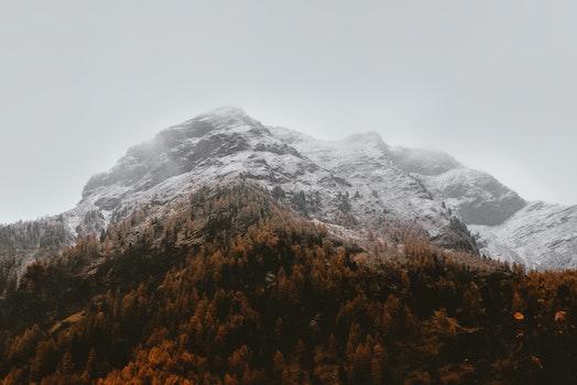 HD wallpaper zu kalt, schnee, landschaft, natur