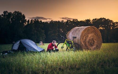 Foto profissional grátis de acampamento, ação, ao ar livre