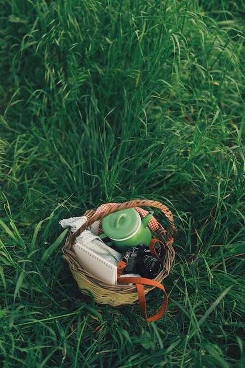 Brown Wicker Basket on Green Grass