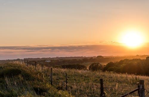 光, 內布拉斯加州, 和平的, 國家 的 免費圖庫相片