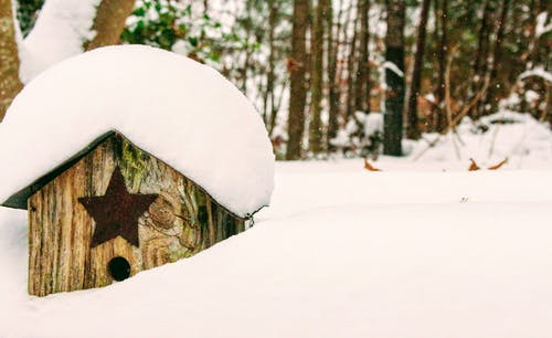Brown Wooden Birdhouse Covered With Snow