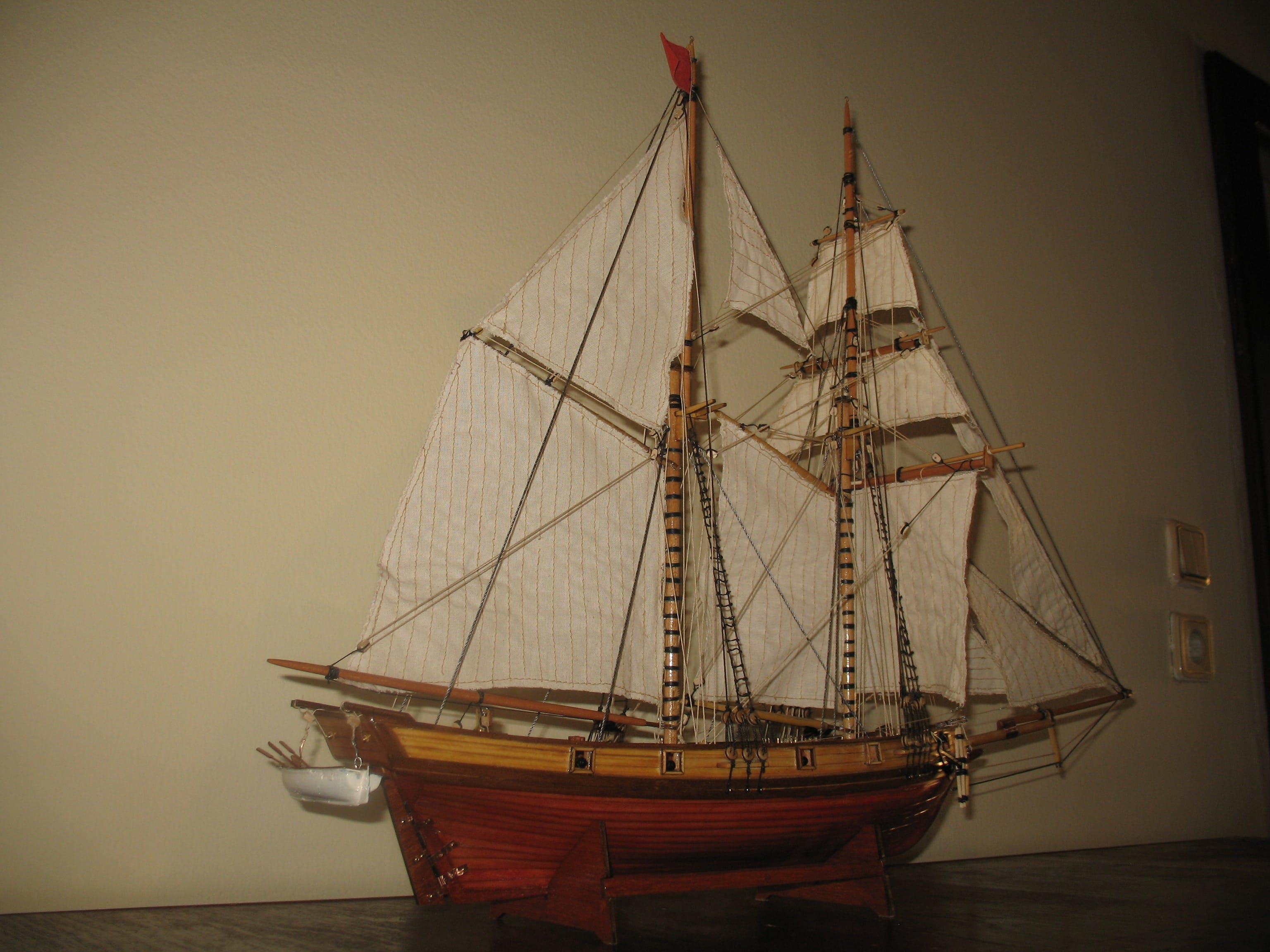 Free stock photo of albatross, boat, clipper, model