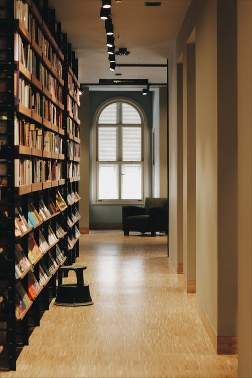 Corridor with window and bookcase in public library