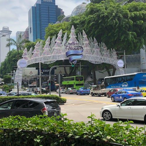 新加坡, 聖誕節裝飾 的 免费素材照片