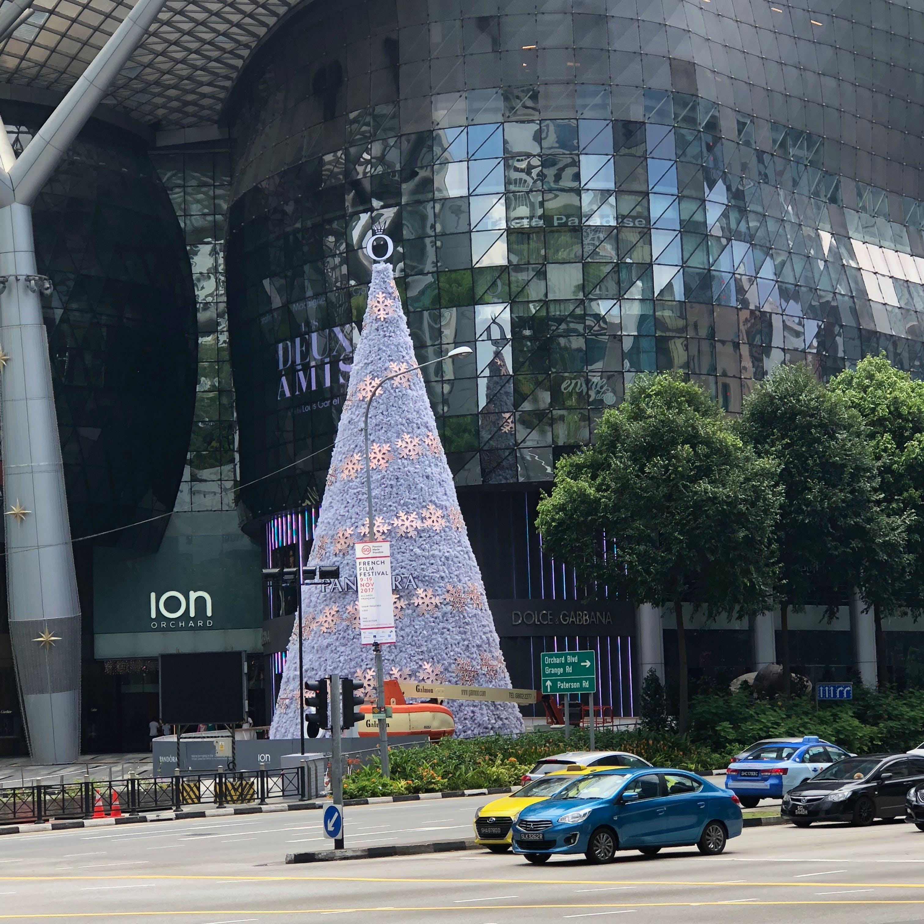 Free stock photo of christmas tree, singapore