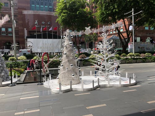 樹, 白色, 聖誕 的 免费素材照片