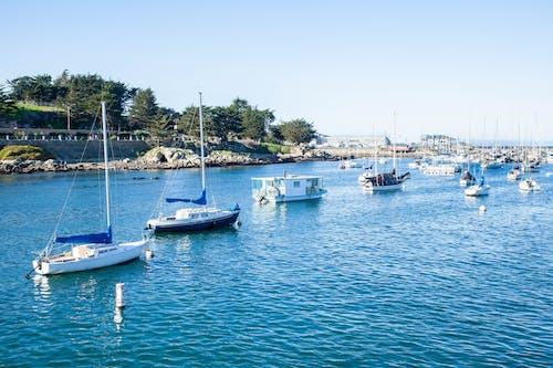 Ingyenes stockfotó csónakok, jachtkikötő, jachtok, kikötő témában