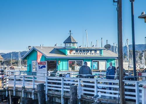 建造, 码头, 碼頭 的 免费素材照片