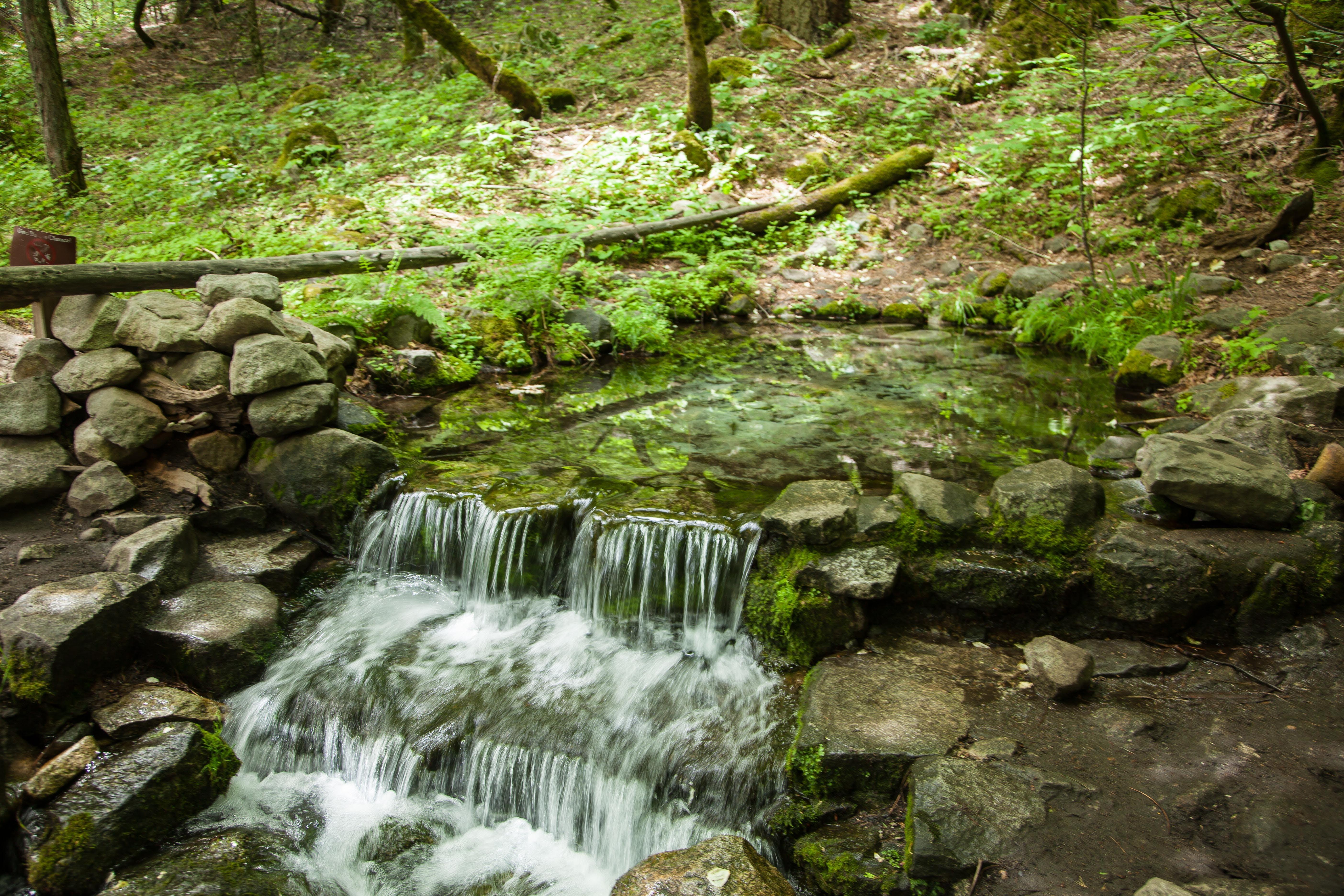 Free stock photo of Littel waterfall, running water, stream, waterfall