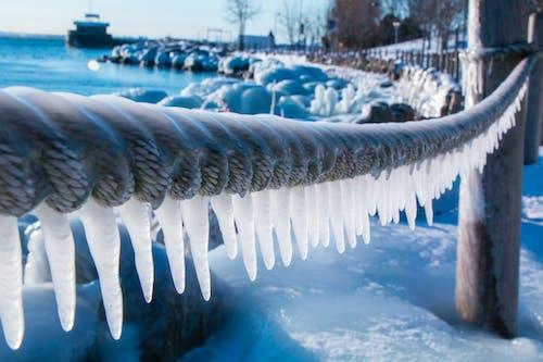 Ilmainen kuvapankkikuva tunnisteilla jää, Kanada, talvi, Toronto