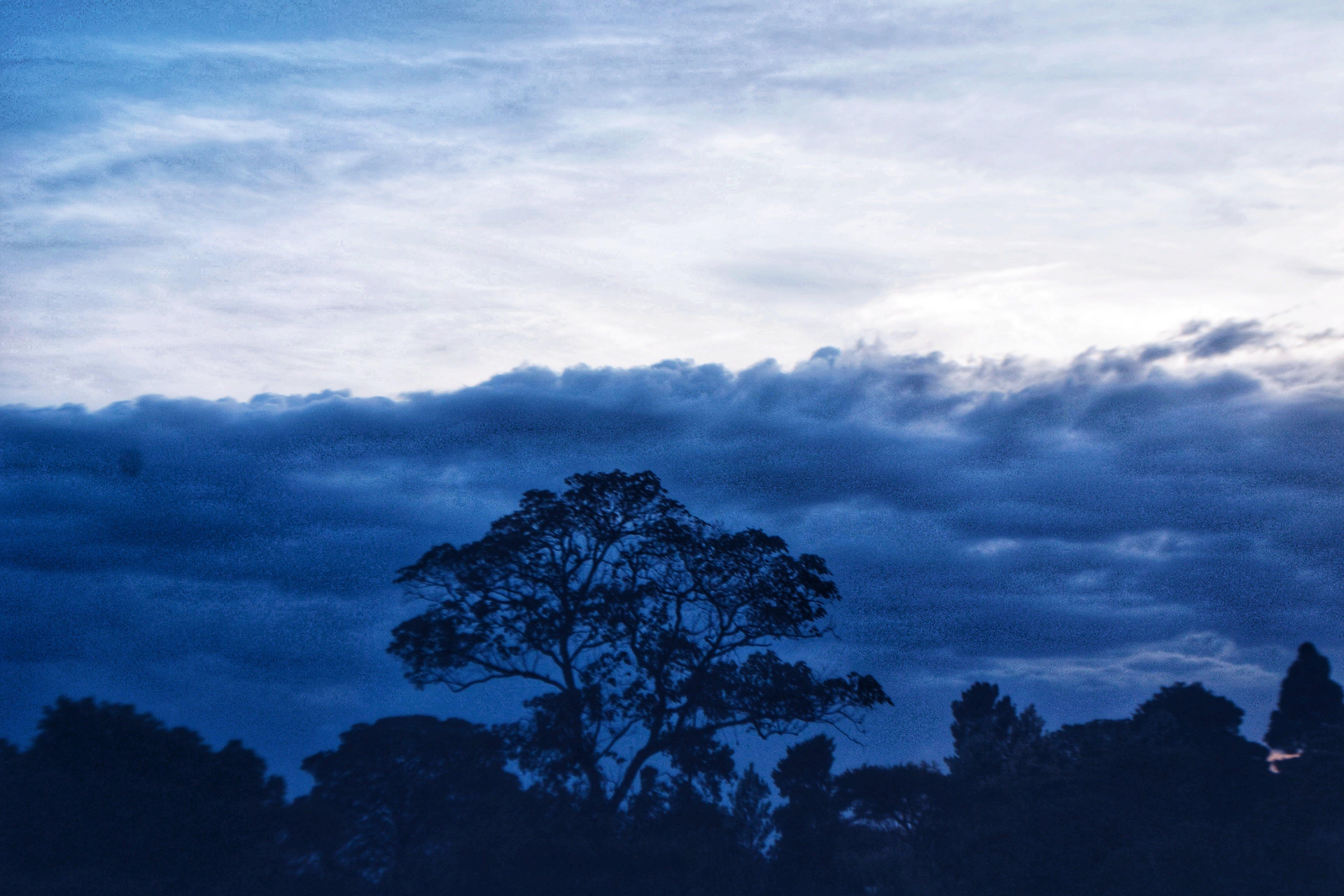 Gratis lagerfoto af blå, blue angels, guddommelig, kunst