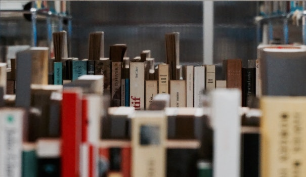 Free stock photo of school, book, library